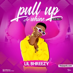 Pull up and whine by Lil Bhreezy