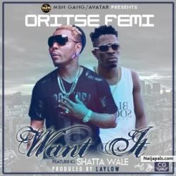 Want It  by Oritse Femi Ft. Shatta Wale ( Prod. B Laylow)