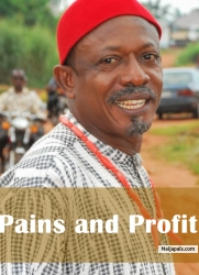 Pains and Profit