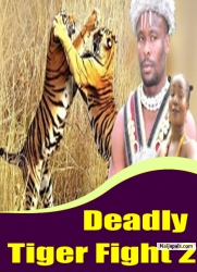 Deadly Tiger Fight 2