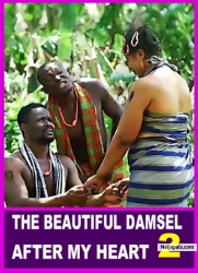 THE BEAUTIFUL DAMSEL AFTER MY HEART 2