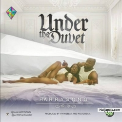 Under The Duvet by Harrysong
