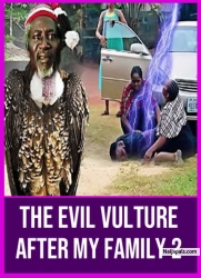 The Evil Vulture After My Family 2