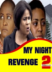 MY NIGHT REVENGE 2