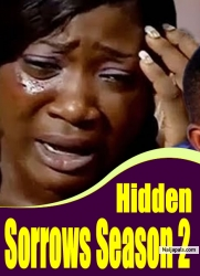 Hidden Sorrows Season 2