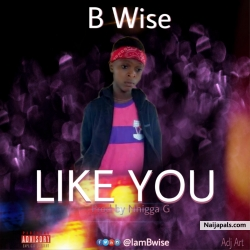 Like You by B wise