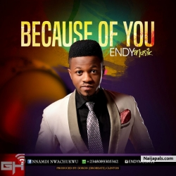Because of You by Endy Musik