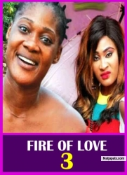 FIRE OF LOVE 3