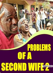 PROBLEMS OF A SECOND WIFE 2