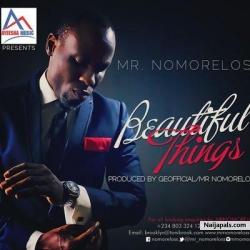 Beautiful Things by Nomoreloss