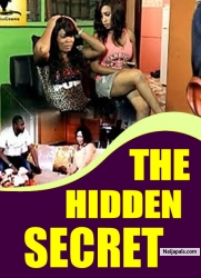 THE HIDDEN SECRET