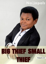 Big Thief Small Thief