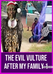 The Evil Vulture After My Family 1
