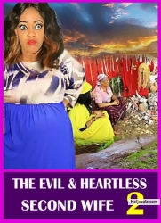THE EVIL AND HEARTLESS SECOND WIFE 2