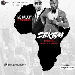 Sekem (Remix) by MC Galaxy Ft. Swizz Beatz