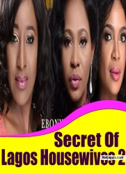 Secret Of Lagos Housewives 2