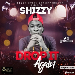 drop it again by Shizzy