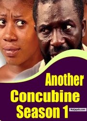 Another Concubine Season 1