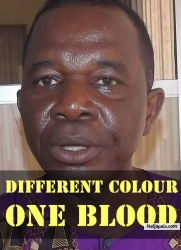 Different Colour One Blood