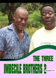 THE THREE IMBECILE BROTHERS 2