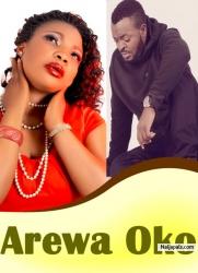 Arewa Oko