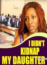 I DIDN'T KIDNAP MY DAUGHTER