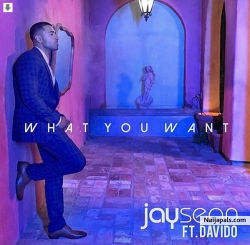 What You Want by Jay Sean ft. Davido