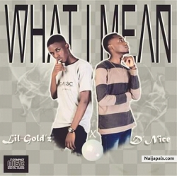 What I Mean by Lil-Gold'z Ft D'Nice