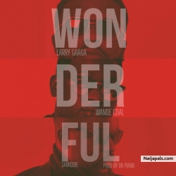 Wonderful by Larry Gaaga ft. Wande Coal & Sarkodie