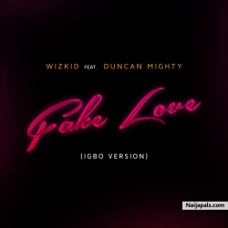 Fake Love (igbo version) by wizkid - Fake Love (igbo version) feat duncan mighty, Iceboy