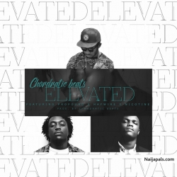 Elevated by Chordratic Beats Ft. Nicotine, Profound & Haywire