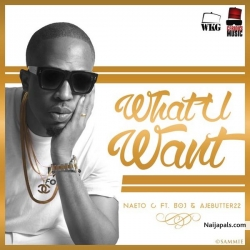 What You Want by Naeto C ft. BOJ x Ajebutter22