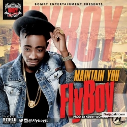 Maintain by Fly Boy