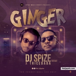 Ginger by DJ Spize X Trice Baba