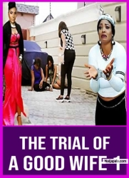The Trial Of A Good Wife 1