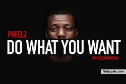Do What You Want by Pheelz