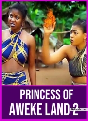 Princess Of Aweke Land 2