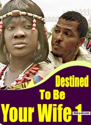 Destined to be Your Wife 1