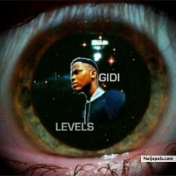 Levels Ft. Yung Dolo by Gidi