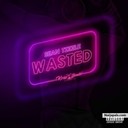 Wasted by Sean Tizzle
