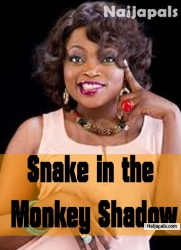 Snake In The Monkey Shadow