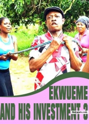 Ekwueme And His Investment 3
