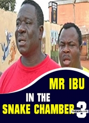 MR IBU IN THE SNAKE CHAMBER 3
