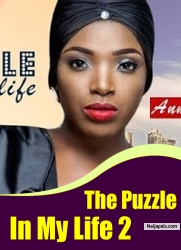 The Puzzle In My Life 2