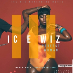 Perfect woman by Ice wiz