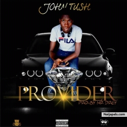 Provider by Johntush