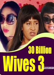 30 Billion Wives 3