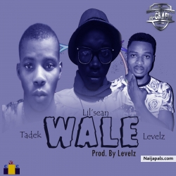 Wale (prod. Levels) by C vybez x Tadek ft Levels