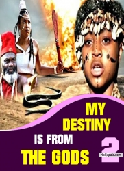 MY DESTINY IS FROM THE GODS 2