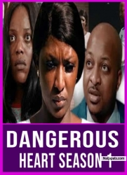 DANGEROUS HEART SEASON 1